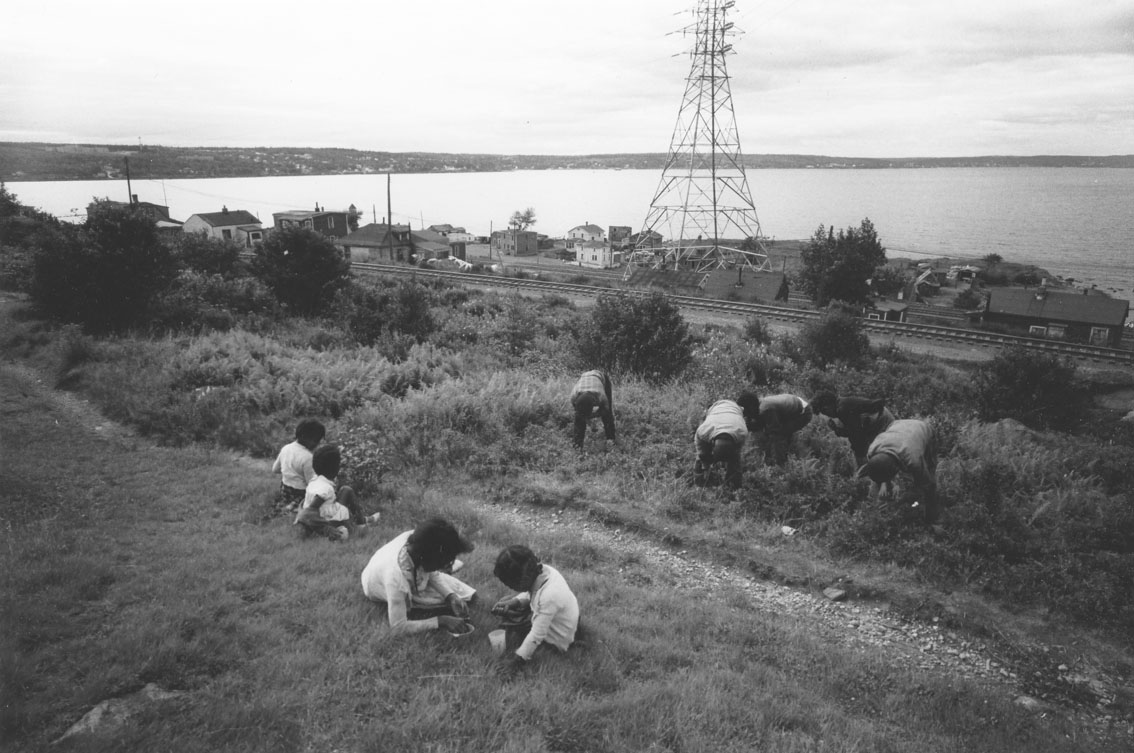Young blueberry pickers, Africville, with railway tracks, houses and Bedford Basin in the background.
