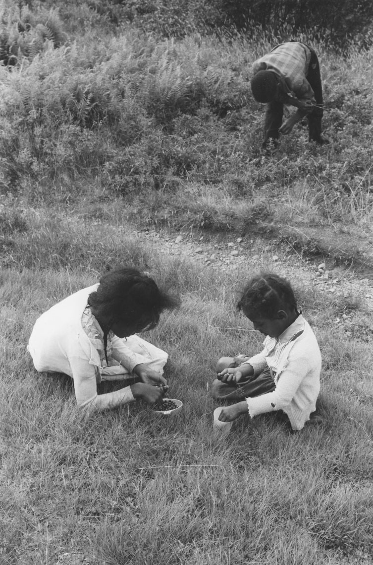 Two young girls picking blueberries, Africville