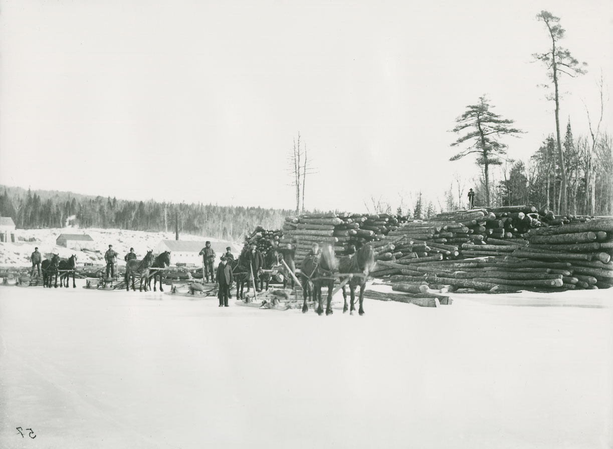 Sawmill and log brow before fire – Falmouth, Nova Scotia