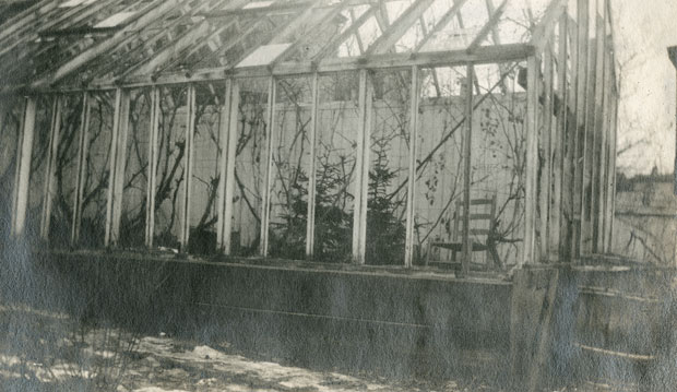 Greenhouse on Portland Street, Dartmouth After the Explosion