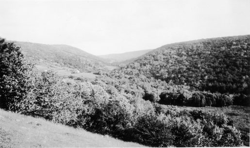 View of Cape Breton valley