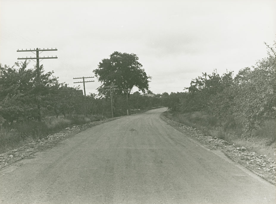 Middleton - Bridgetown Route No. 1, 2 miles east of Lawrencetown, looking west