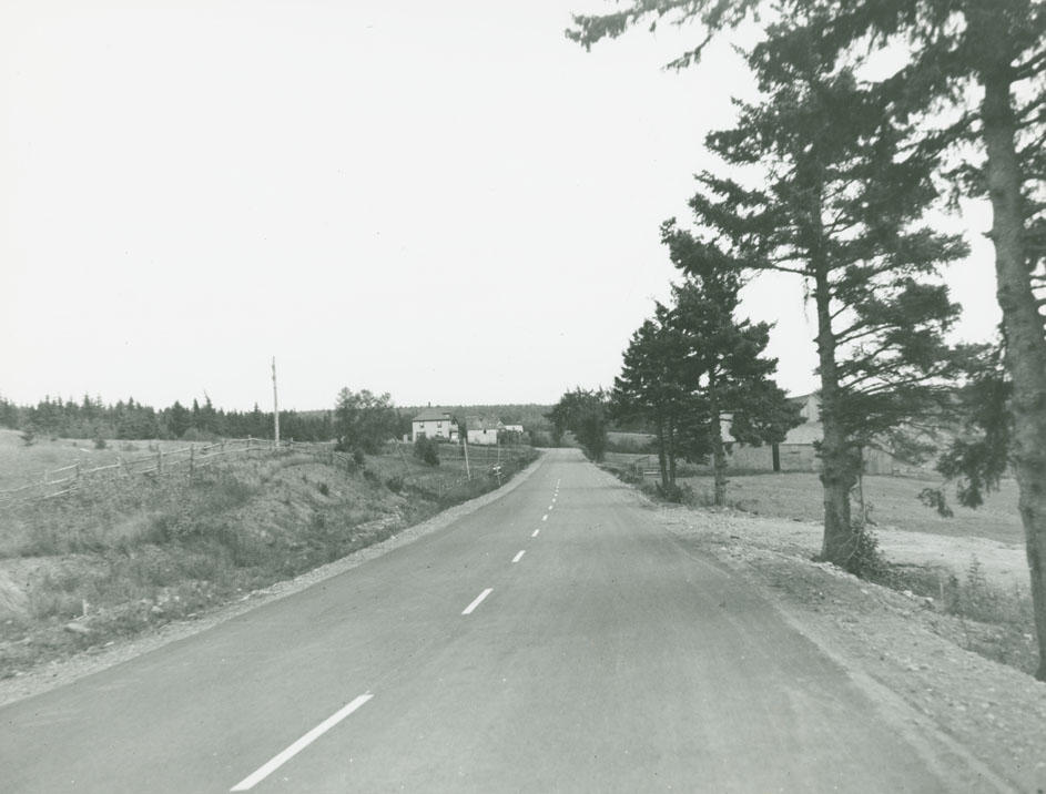 Atkinson Road - Springhill Route No. 2, Near Nappan River looking North