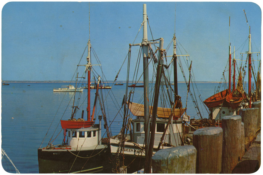 ''Cape Cod fishing boats at dock''