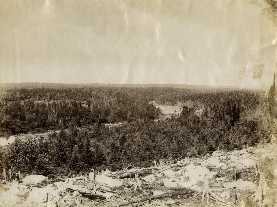 Notman : Sheet Harbour, showing lumber on river, on reverse, Sheet Harbour, Nova Scotia, Chisholm Saw Mill just below bridge