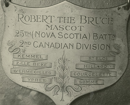 Name plate of 'Robert the Bruce', Mascot of the 25th Nova Scotia Battalion