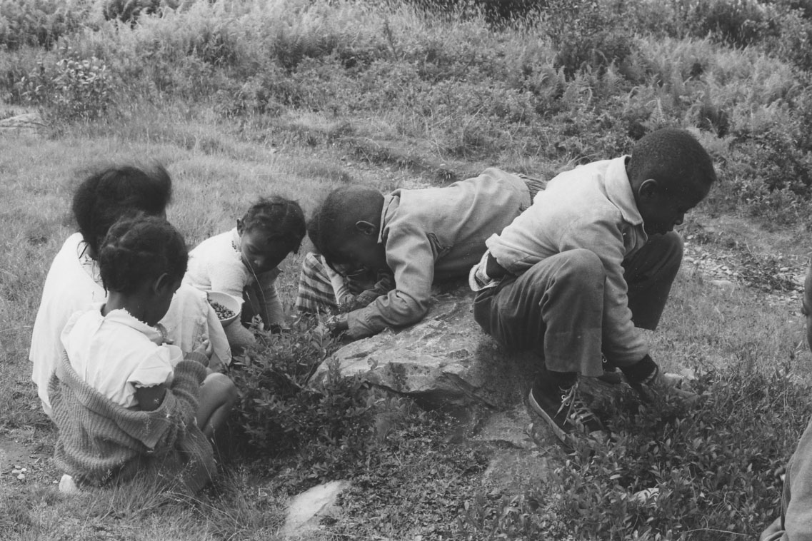 africville : Children picking blueberries, Africville