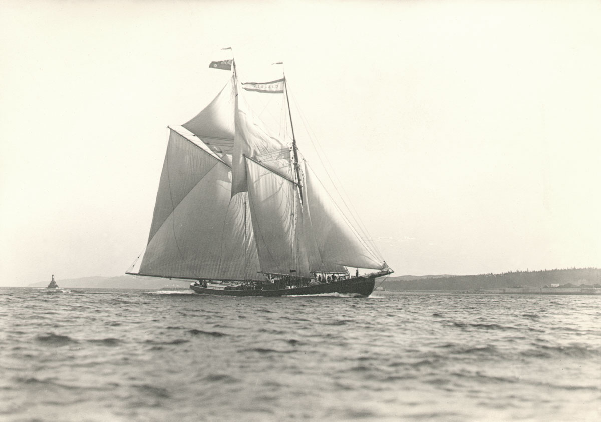 <i>Canadia</i> entering harbour for elimination race, 1922