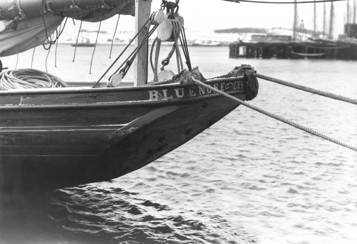 Marine Survey of <i>Bluenose</i>