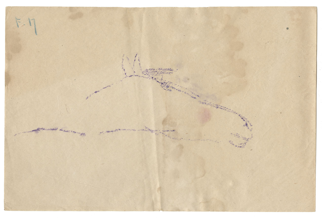 Tracing of a petroglyph of the head of a horse
