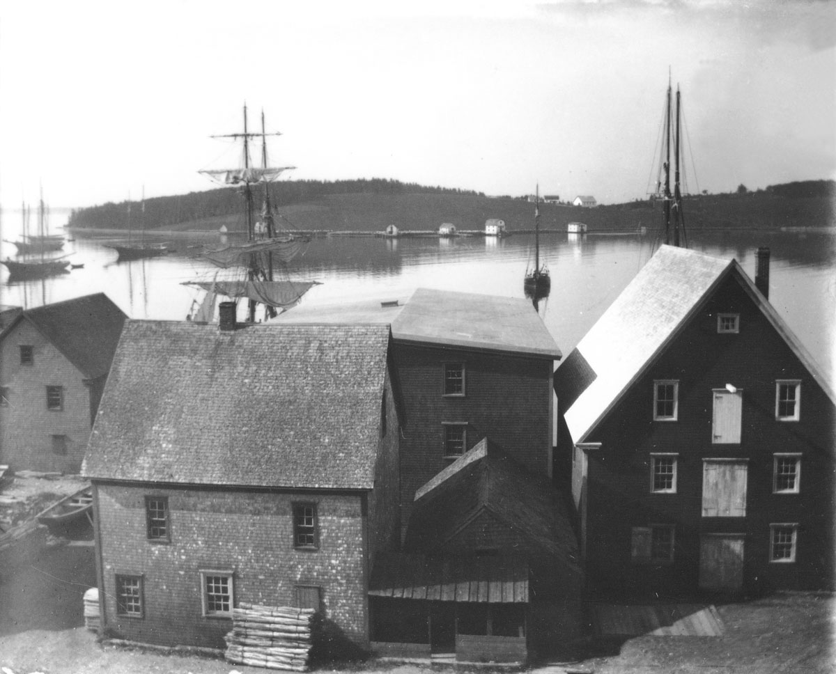 View of Harbour with buildings in foreground
