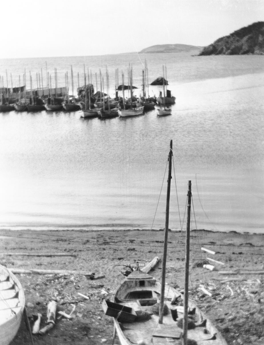 Sailboats at anchor, unidentified harbour