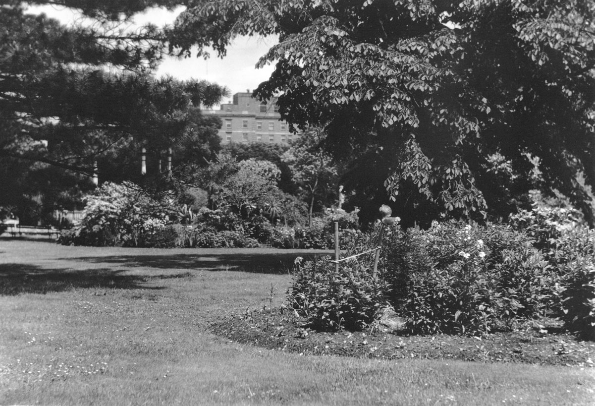 macaskill : Halifax Public Gardens, Lord Nelson Hotel in background