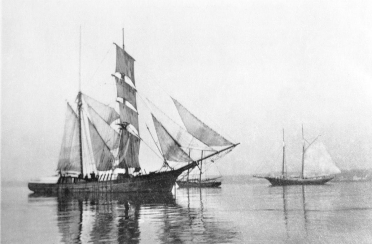 Unidentified brigantine and Grand Bank fishing schooners at anchor